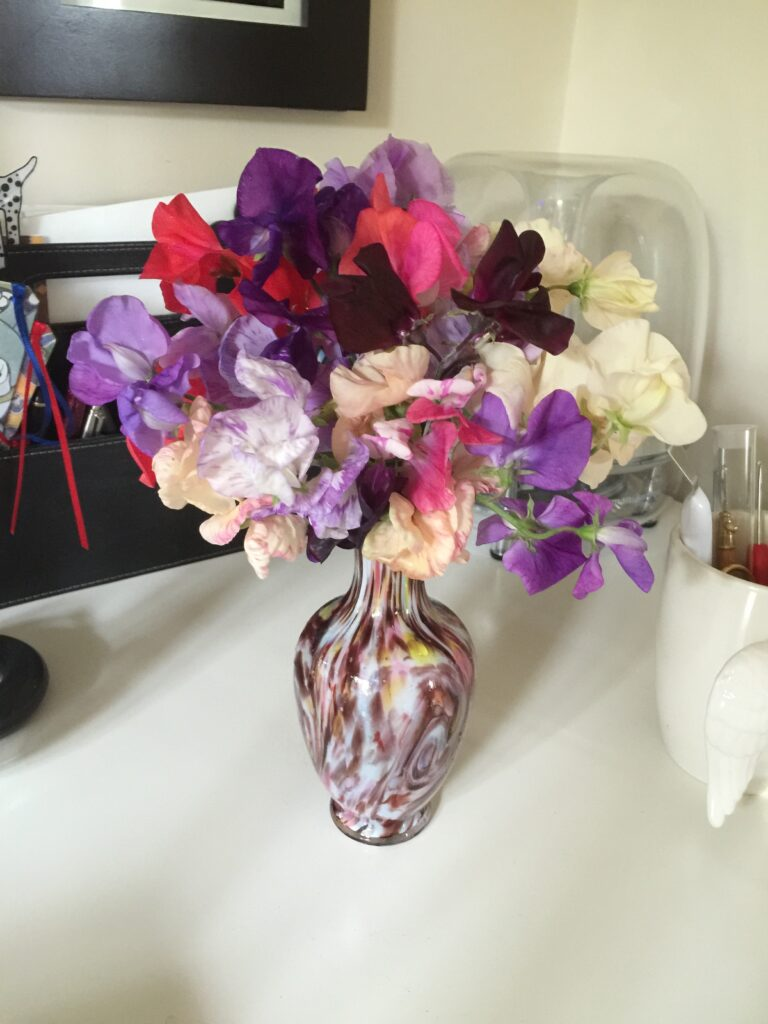 Sweet peas in an appropriately coloured vase